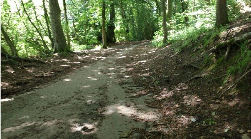 Sustrans Rangers – Tuesday 10th September – Showground